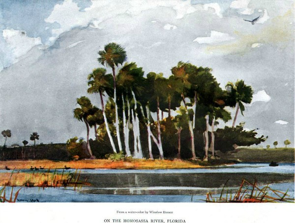Homosassa Florida by Winslow Homer