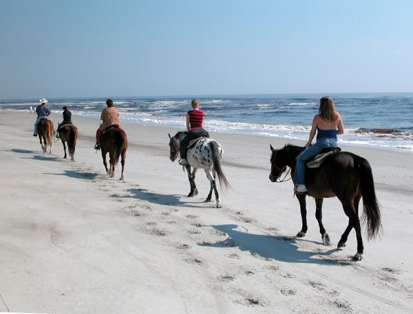 Horseback Riding on Amelia Island, Florida