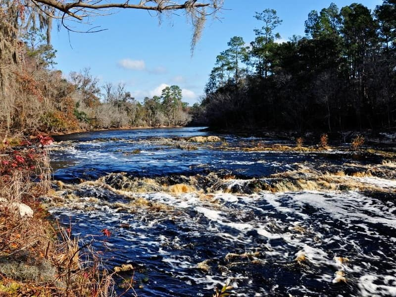 Big Shoals on the Suwannee River