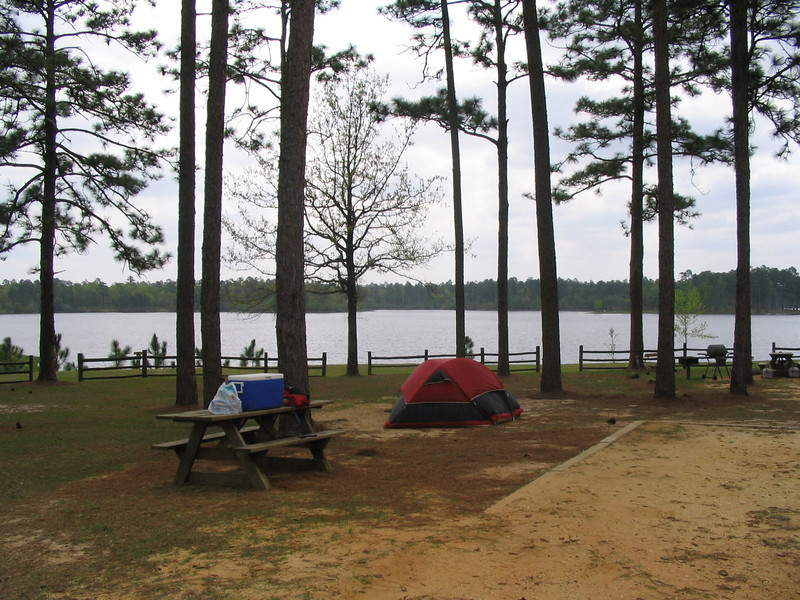 Campsite at Blackwater River State Forest