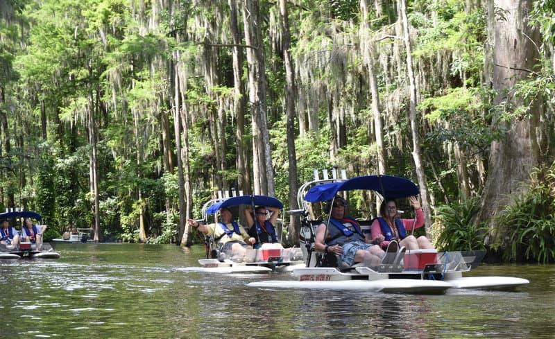 Catboat Adventures Fun And Nature In Mount Dora