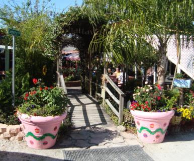 Chattaway St Petersburg Florida