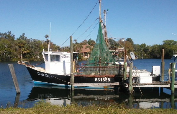 Crystal River Fishing Boat