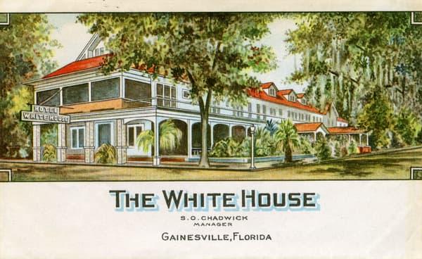 Vintage Postcard Gainesville, Florida