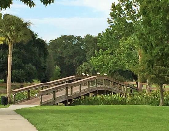One of Five Bridges at Venetian Gardens, Leesburg, Florida