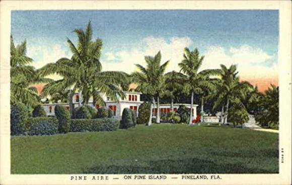 Vintage Postcard Pine Island, Florida