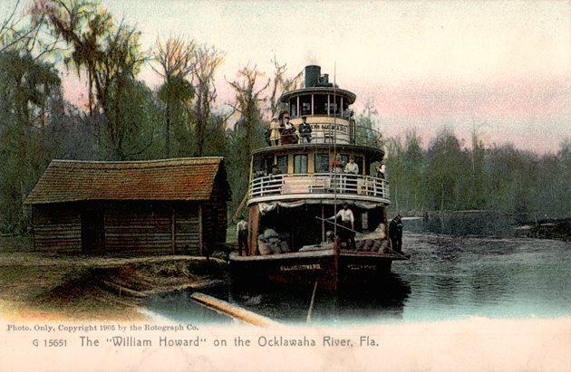 Vintage Postcard Ocklawaha River, Florida