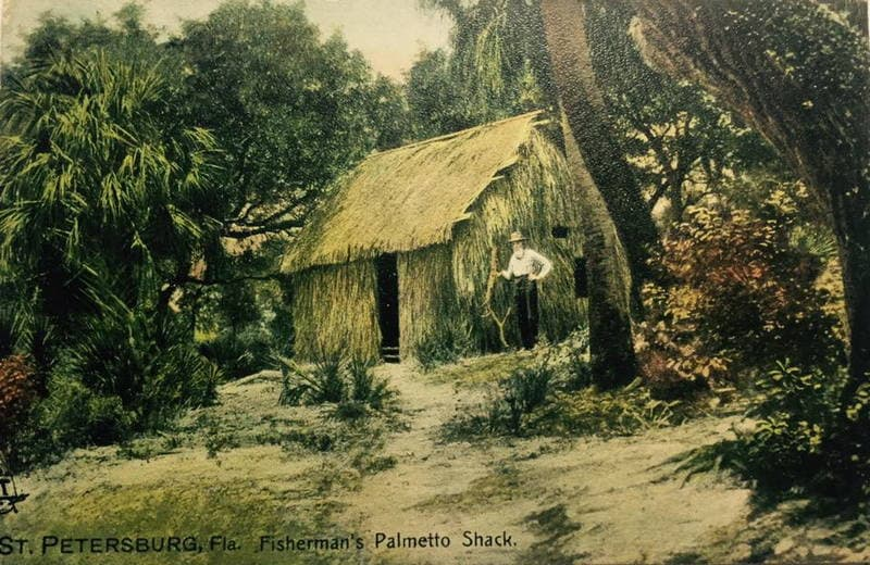 Vintage Postcard Florida Fisherman's Palmetto Shack