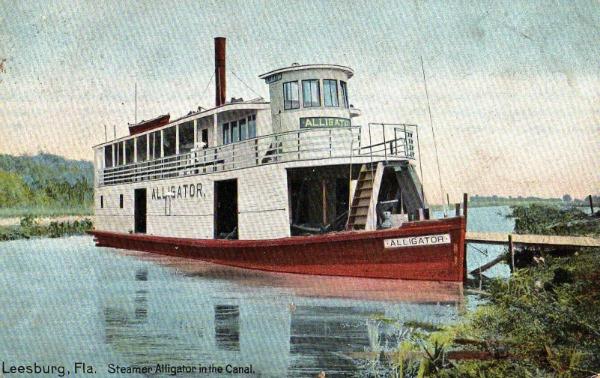 Steamboat Alligator
