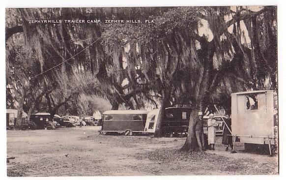 Vintage Postcard Zephyr Hills