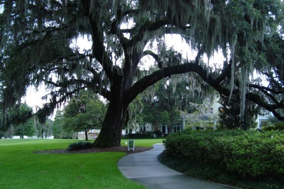 Orlando Leu Gardens