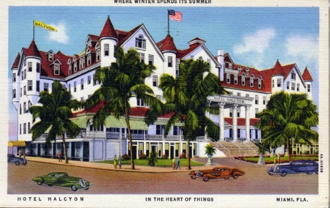 Miami Florida Hotel Halcyon Postcard