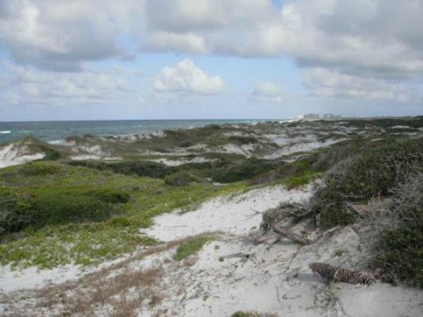 Topsail Hill Dunes State Park
