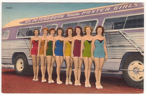 Beauty Queens and the Webb's City Bus