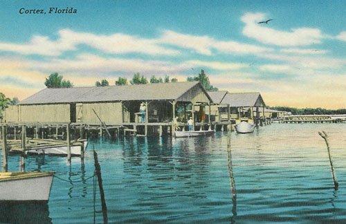 Vintage Postcard, Cortez, Florida