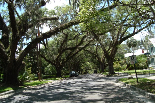 Brooksville Avenue