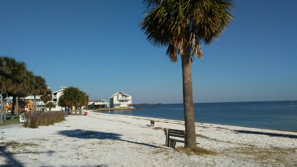 Beach in Downtown Cedar Key