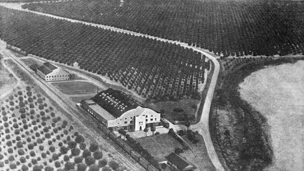 Doctor Phillips, Florida. Vintage aerial view.