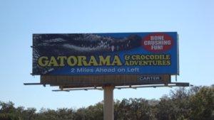 Gatorama near Palmdale, Florida