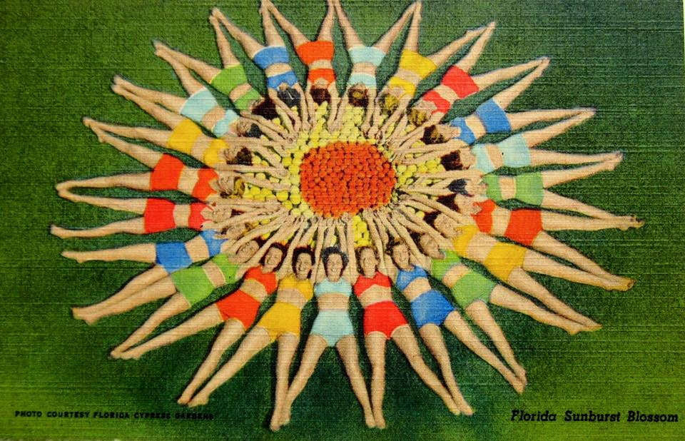 Vintage Postcard, Florida Girls in Sunburst Pose
