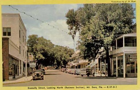 Mount Dora Florida Downtown Postcard