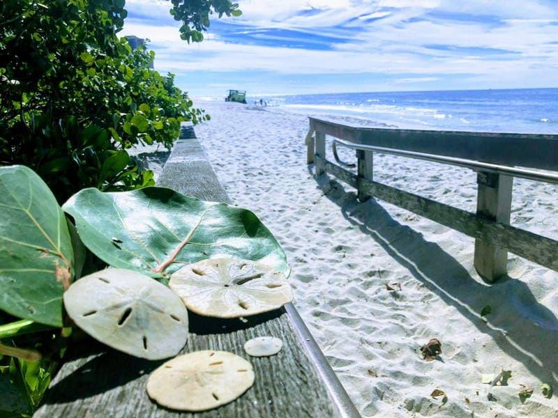 Seagate Beach in Naples, Florida
