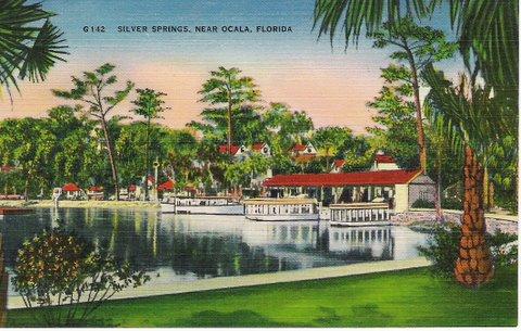 Vintage Postcard Ocala, Florida