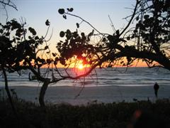 Old Naples Florida Sunset