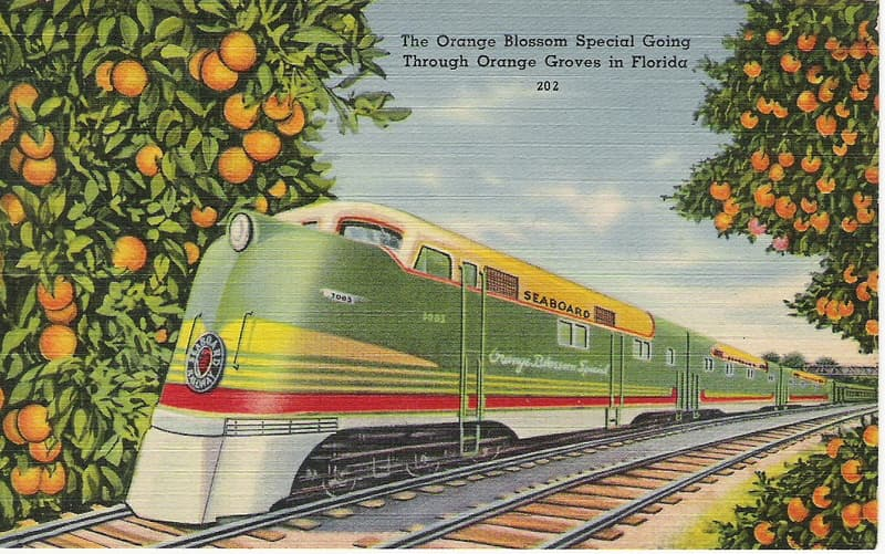 Vintage Postcard Seaboard Air Line Railroad Orange Blossom Special