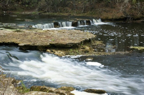 Steinhatchee Florida Falls
