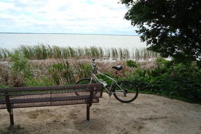 Lake Apopka Loop Trail Bike