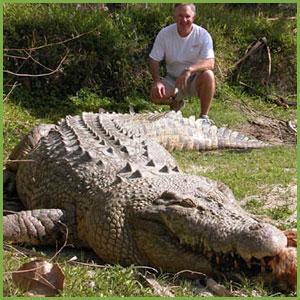 Maximo the Crocodile at St Augustine Alligator Farm